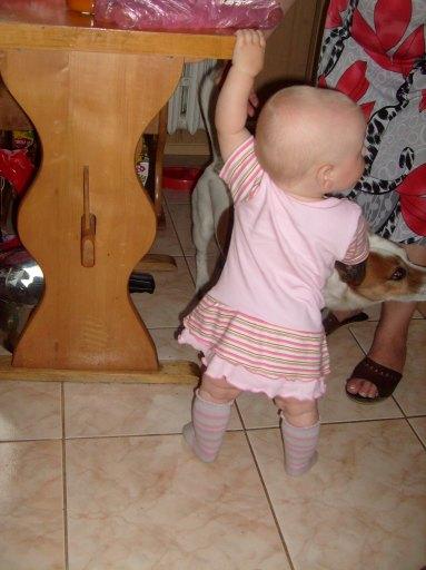 I jednak nie dosięgnę tej kiełbasy... to może chociaż psa uda się pogłaskać :).