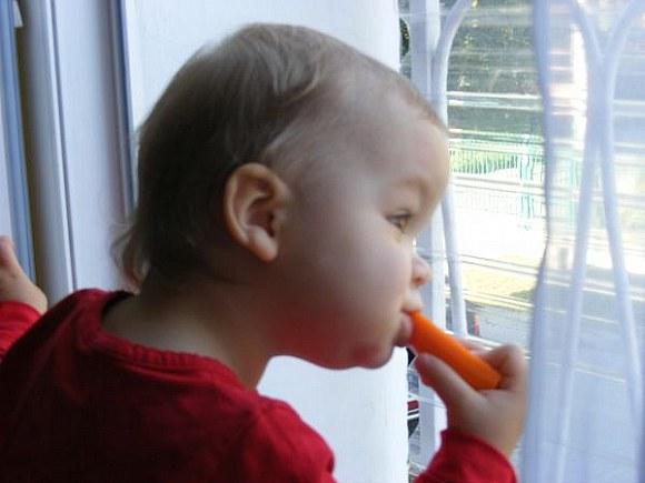 Ludzie a kuku jem marchewkę