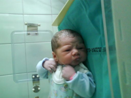 Tutaj Pola w inkubatorze;). ma kilka minut - 23kB