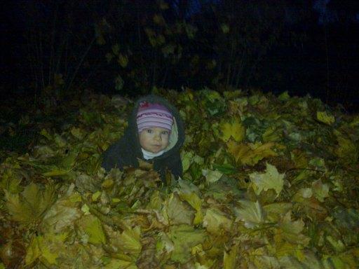 Dama w liściach
