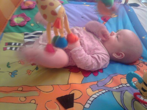 Atakować zabawki!!!....